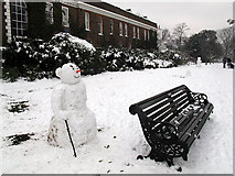 TQ3877 : Snowman with stick by Stephen Craven