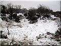 TQ3977 : Blackheath Pits (2) by Stephen Craven