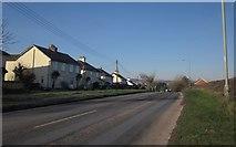 ST0307 : A373 at Stoneyford by Derek Harper