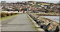 J4972 : The seawall, Newtownards by Albert Bridge