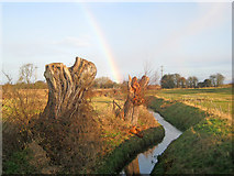 SK8259 : Drainage ditch at Langford by Trevor Rickard