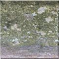 SU1026 : Benchmark on the bridge by Jonathan Kington