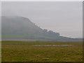 NT1399 : Farmland near Classlochie by William Starkey