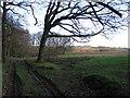 SN7271 : Track towards Ysbyty Ystwyth by Rudi Winter