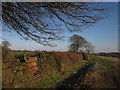 ST1210 : Path to Hagdon Farm by Derek Harper
