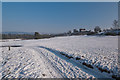 TQ2349 : Reigate Heath in snow by Ian Capper