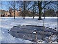 TL4656 : Icy pond at Homerton College by Marathon