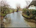 SU1126 : Downstream on the Ebble by Jonathan Kington