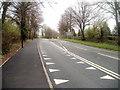 ST4690 : Crocodile teeth road markings, Caerwent by Jaggery