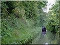 SJ6930 : Woodseaves Cutting north of High Bridge, Shropshire by Roger  Kidd