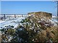 TF4033 : The Wash coast in winter - Pillbox on the sea bank by Richard Humphrey