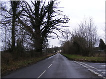 TM3569 : Abbey Road, Sibton by Geographer