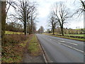 ST4291 : 50 mph speed limit on the A48 in Penhow by Jaggery