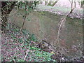 SU1997 : Canal wall, disused Thames and Severn Canal by Vieve Forward