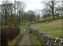 SK2276 : Footpath to Stoney Middleton by Andrew Hill