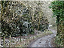 SK2274 : The narrowest section of Coombs Dale by Andrew Hill