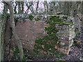 SU1998 : Walling, disused Thames and Severn Canal near Dudgrove Farm by Vieve Forward