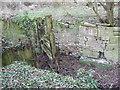 SU1998 : Lock gate, disused Thames and Severn Canal near Dudgrove Farm by Vieve Forward