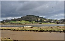 SY2591 : East Devon : The River Axe by Lewis Clarke