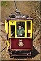 SY2593 : East Devon : Oncoming Tram by Lewis Clarke