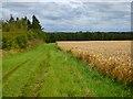 NZ0712 : Farmland, Brignall by Andrew Smith