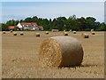 NZ2113 : Farmland, Manfield by Andrew Smith