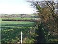 TQ5265 : Public footpath near Eynsford by Malc McDonald