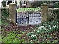 ST7818 : Gate, Marnhull by Maigheach-gheal