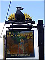 ST7719 : Sign for the Blackmore Vale Inn by Maigheach-gheal