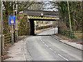 SJ6096 : Golborne Dale Bridge by David Dixon