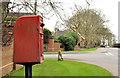J1459 : Letter box, Moira by Albert Bridge