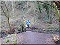 NZ3374 : Footbridge in Holywell Dene by Oliver Dixon