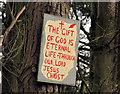 J3655 : Biblical message near Ballynahinch by Albert Bridge