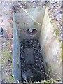 SU5086 : Inspection hole in the cutting by Bill Nicholls