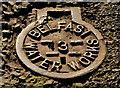 J3774 : Belfast Water Works cover, Belfast (6) by Albert Bridge