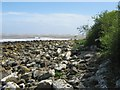 NX8853 : Rocky foreshore at Blackneuk Craigs by Ann Cook