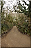 SX0780 : A country road at Knighsmill by Philip Halling