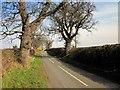 SJ4356 : Edgerley Lane near Churton by Jeff Buck
