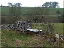 SK1372 : Old bath above Blackwell Dale, Derbyshire by Neil Theasby