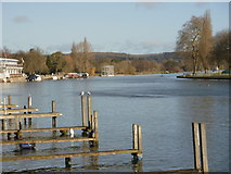 SU7682 : Looking up the river at Henley-on-Thames by Peter S