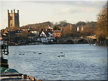 SU7682 : The river at Henley-on-Thames, towards the bridge by Peter S