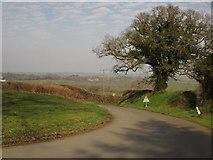 SX3287 : Road at Werrington by Derek Harper