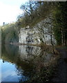 SK1772 : Limestone crag by the River Wye by Andrew Hill
