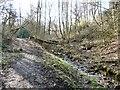 SJ9594 : Gower Hey Brook by Gerald England