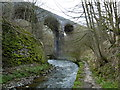 SK1172 : River Wye and viaduct, Chee Dale by Andrew Hill