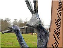 "J3472 : The ""Blackbird of Belfast Lough"" (3) by Albert Bridge"