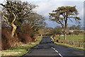 NY4761 : A minor road near Carlisle Airport by Walter Baxter