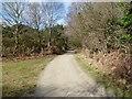 SZ0184 : Newton Heath, NCN2 by Mike Faherty