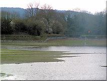 SP9113 : Medieval Ridge and Furrow - Startops Reservoir, Near Tring by Chris Reynolds