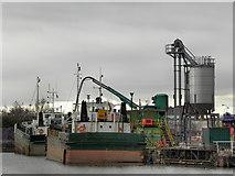 SJ8097 : Manchester Dock, Trafford Park by David Dixon